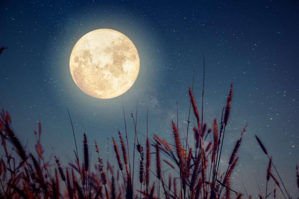 Influyen los ciclos lunares