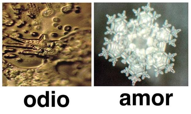 Moleculas de agua afectadas por las formas de pensamiento