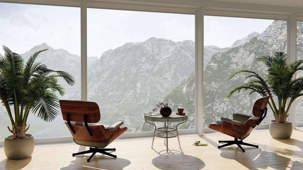 Las plantas y la Energía positiva en el hogar